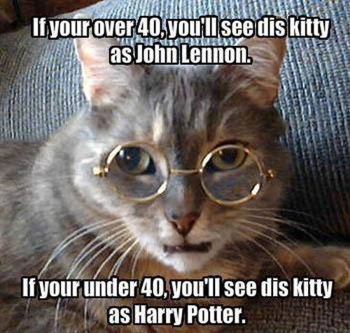 Age test - Cat humor