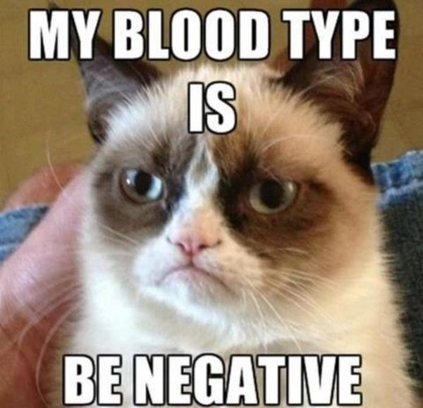 Grumpy Cat's Blood Type - Cat humor