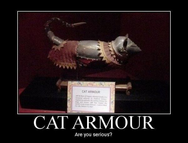 Cat armour - Cat humor