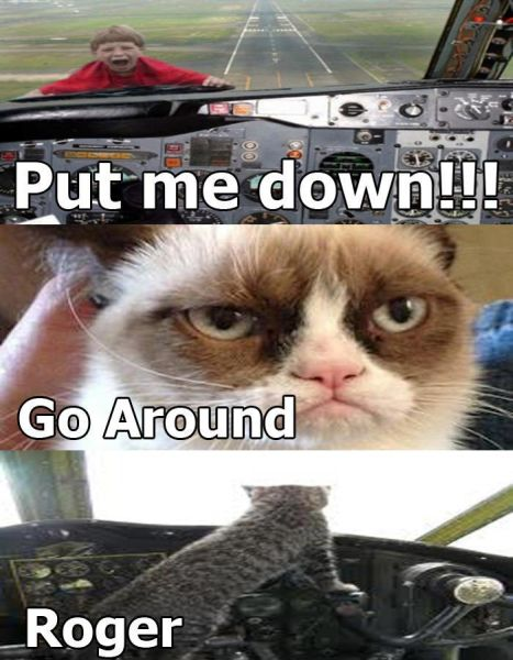 Grumpy Cat Pilot - Cat humor
