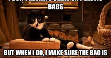 I Don't Always Chew On Plastic Bags - Cat humor