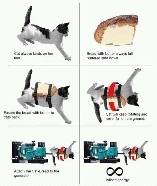 Cat Infinite Energy - Cat humor