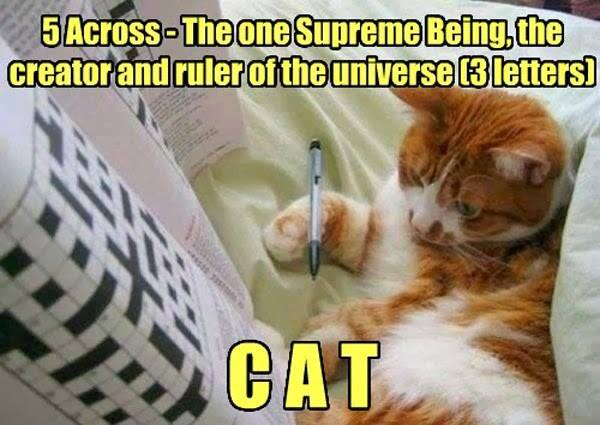 Supreme Being - Three Letters - Cat humor