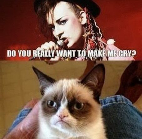 Do You really Want To Hurt Me - Cat humor