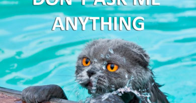 Don't Ask Me Anything - Cat humor