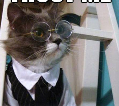 Trust Me - Cat humor