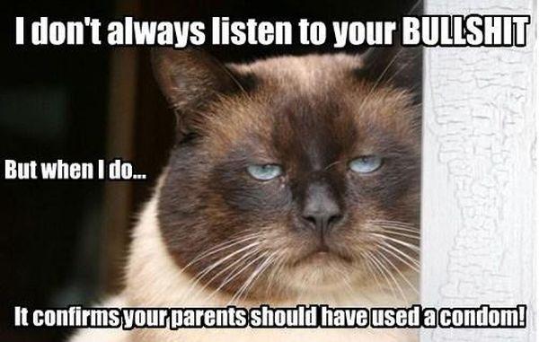 I Don't Always Listen To Your Bulshit - Cat humor