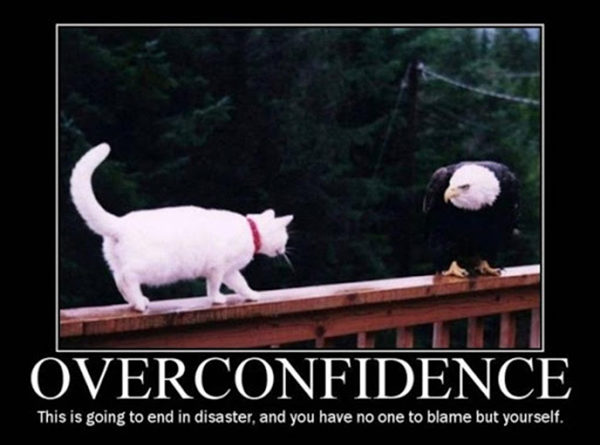 Overconfidence - Cat humor