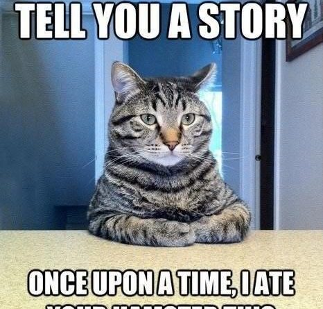 Let Me Tell You A Story - Cat humor