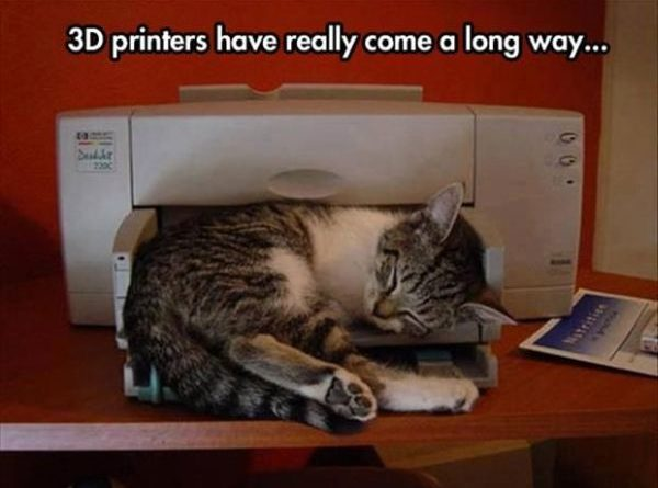 3D Printers Really Came A Long Way... - Cat humor