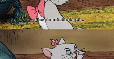 Ladies Do Not Start Fights - Cat humor