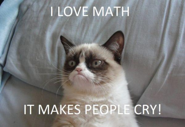 I Love Math - Cat humor