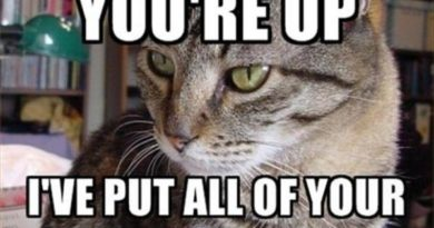 I'm Glad You're Up - Cat humor